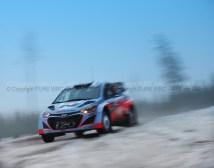 SVEZIA 2014 PURE WRC-15