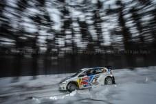 SVEZIA 2014 PURE WRC-33