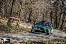39 Rally 1000 Miglia 2015-RIT02