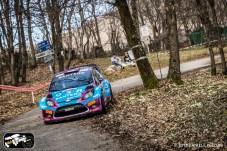 39 Rally 1000 Miglia 2015-RIT03
