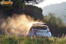 Adac Rally Germania 2015 160