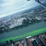 Der grüne Rhein