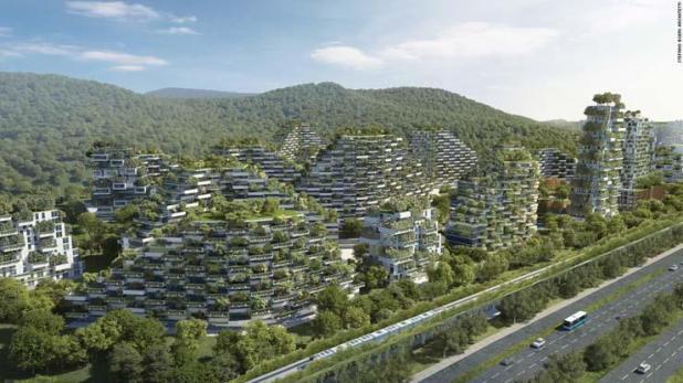 Wald-City2