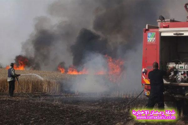 MAIN_Kite-in-Gaza-4