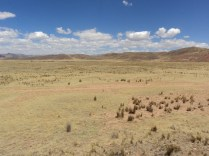 The Altiplano.