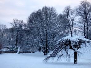 Lots of snow.