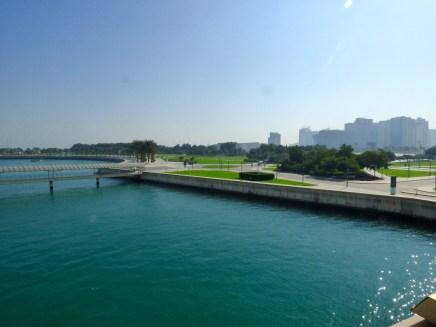 Green, green grass in Doha.