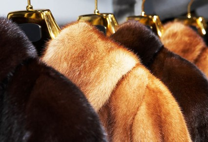 We clean fur coats in Michigan