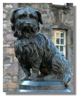 Image result for greyfriars bobby images