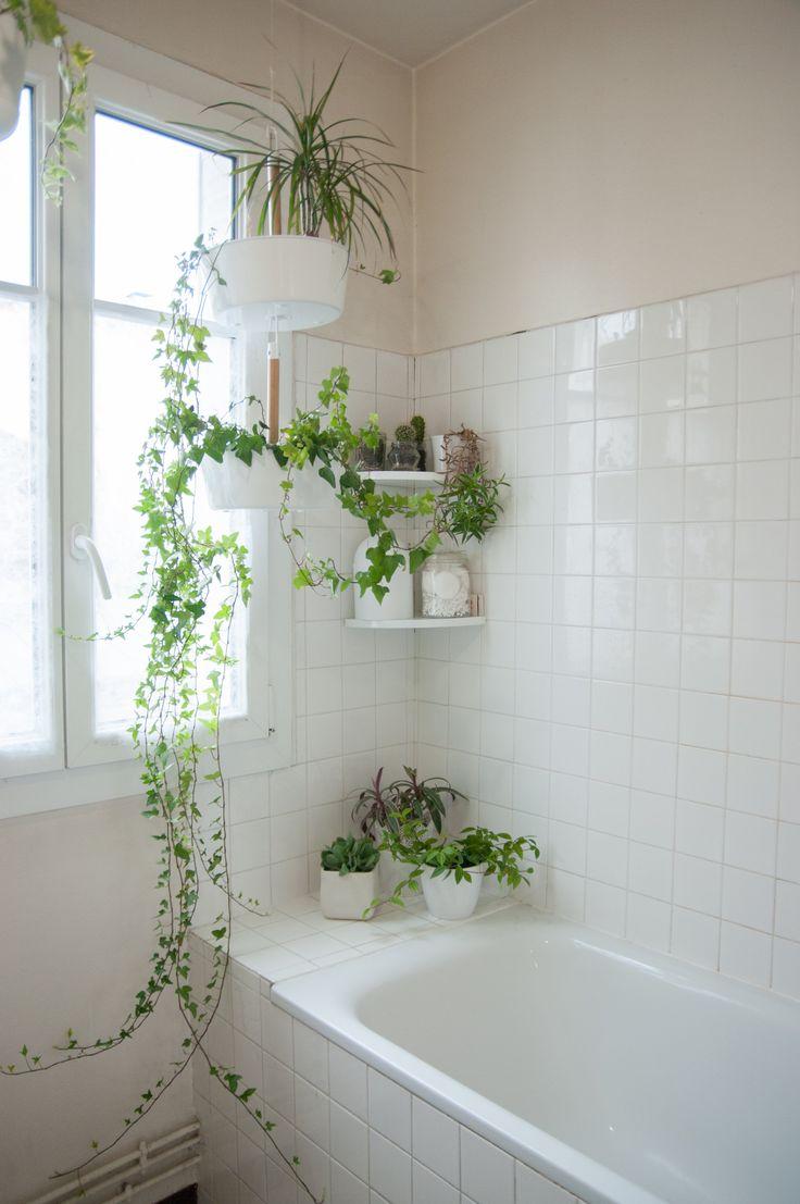 Easy Decor Ideas To Transform Your Bathroom Into A ... on Bathroom Apartment Ideas  id=59211