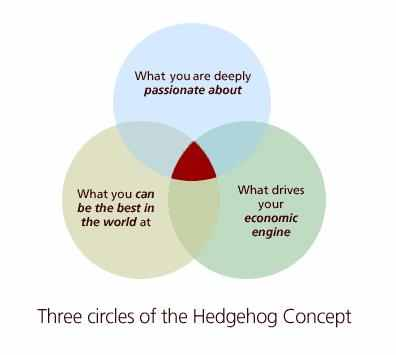 three-circles-of-the-hedgehog-concept