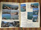 Notes and images towards a flash fiction on dive bombing n Wellington Harbour.