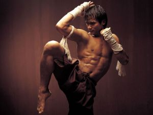 Image of a guy performing a Muay Thai pose