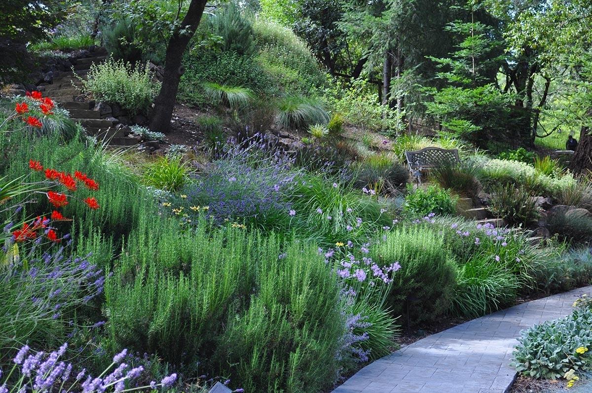 Creative Hillside Landscape Ideas — Randolph Indoor and ... on Steep Hill Backyard Ideas id=98020