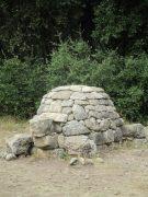 tortue de pierres