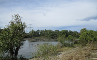 Les gravières de la Durance au Puy-Sainte-Réparade