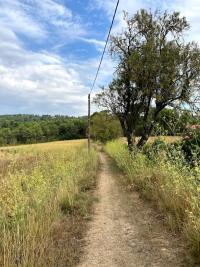 Balade du Tholonet au hameau des Artauds