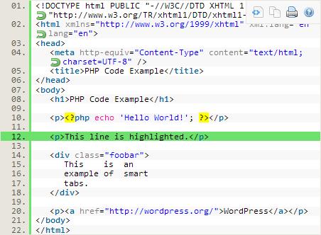 HTML Code in WordPress