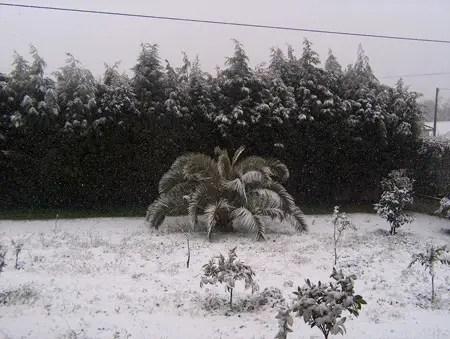 snow07-1