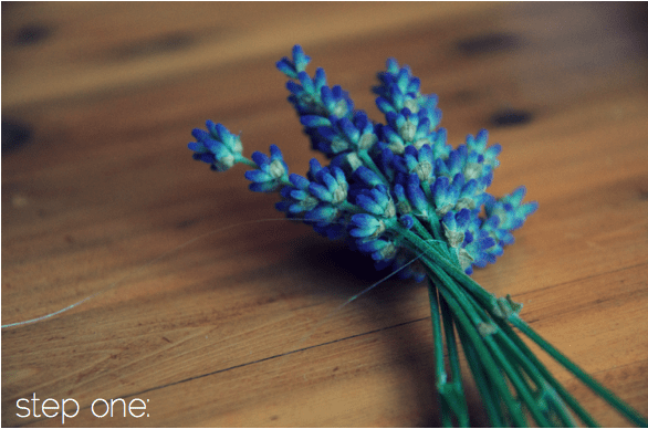 Guest Post: Lavender Wand