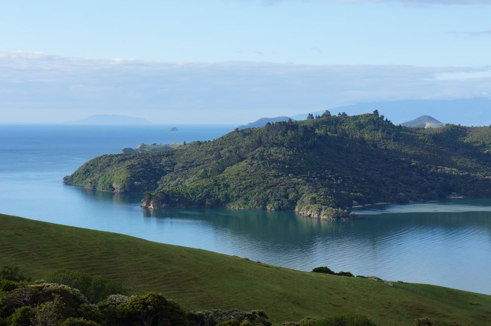 5 Reasons Why I Love Living in New Zealand
