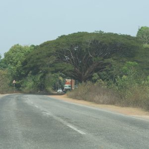 The road from Murudeshwar to Gokarna
