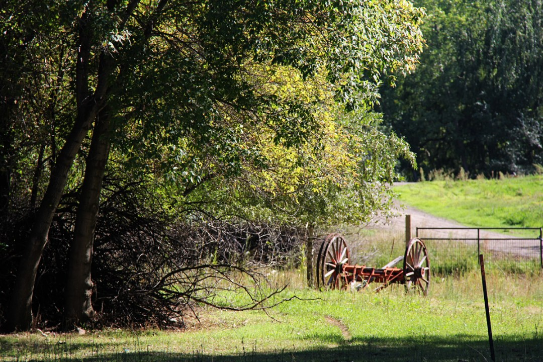 Wheeler Historic Farm Photos and Tips - www.randomolive.com