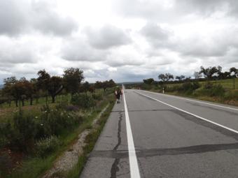 24 KM DE ROUTE