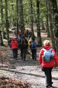 Weekend Randonnée Ain Soltan Feija - randonnée