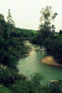 Randonnée à Djebel Tabouba - Oued Maaden