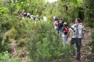 Randonnée à Djebel Tabouba - randonnée 2