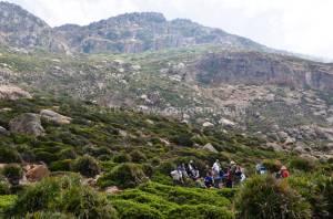 Circuit randonnée el Haouaria - Montagne