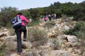 Circuit randonnée Sidi Medien à Zaghouan - vers le sommet