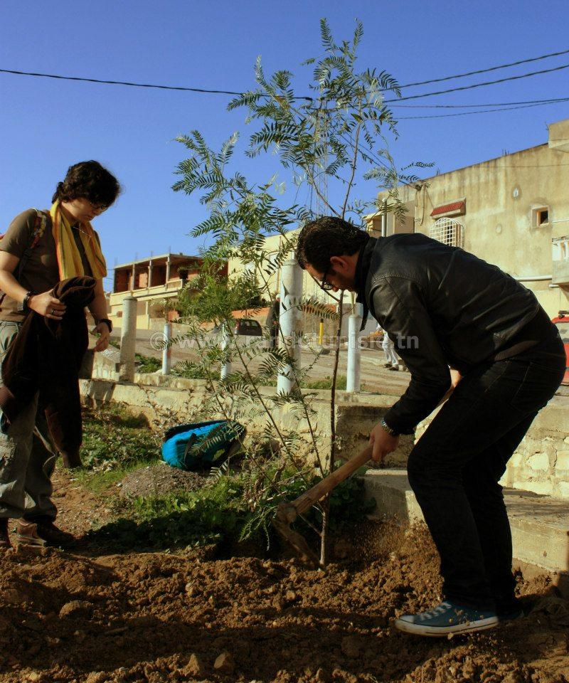 reboisement Tunisie