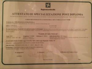 Specializzazione post-diploma inTECNICHE DI CANTO MODERNO