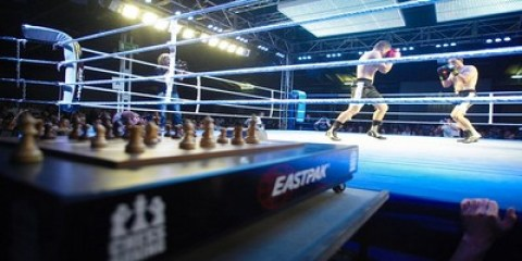 Chess Boxing1
