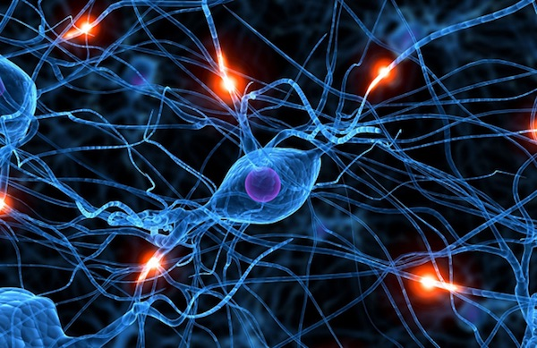 pusat kesenangan otak