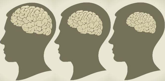 otak menyusut