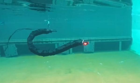 swimming robot