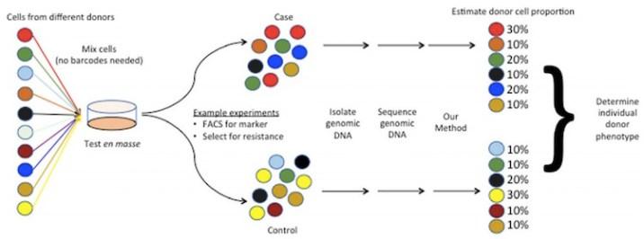 workflow of Natural Barcoding Method