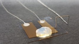 Smallest, Single Atom Transistor
