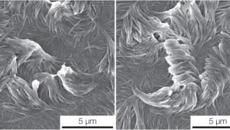 nanofibers for Superpower Coatings