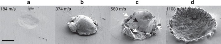 scanning electron micrograph of impact area
