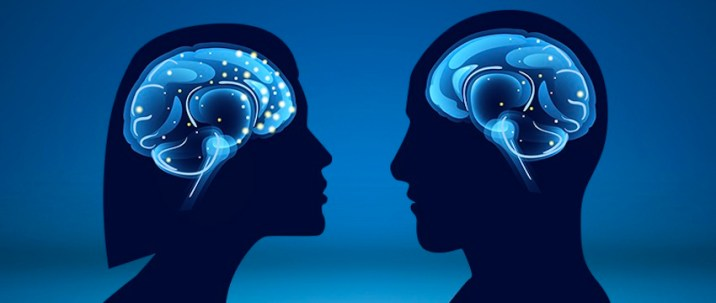 Female Brains are 3 years Younger