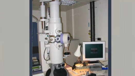 Types of microscopes - Electron