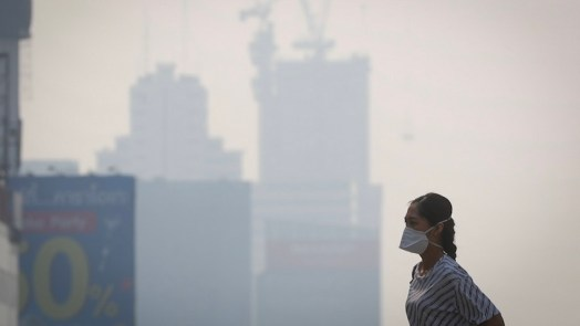 Pollution Leads To Alzheimer's-Like