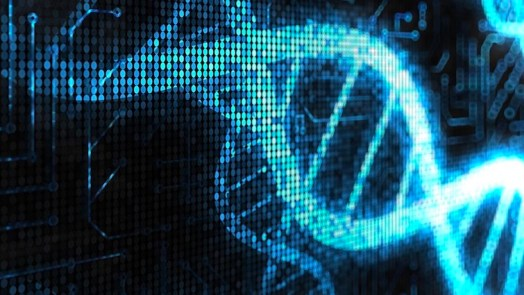 DNA computer calculate square roots