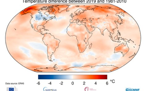 second warmest year