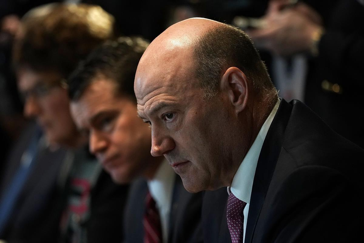 Former National Economic Council Director Gary Cohn Alex Wong/Getty Images)