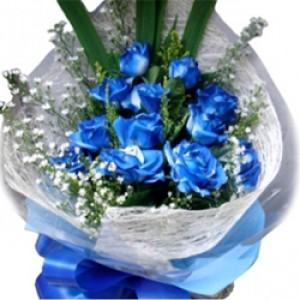 1 dozen blue roses